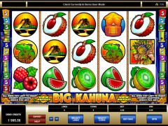 Big Kahuna slots-77.com Microgaming 1/5